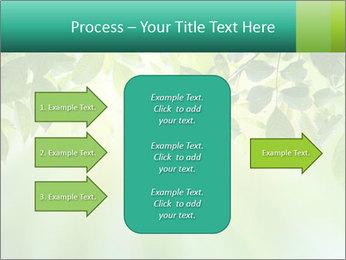 Green leaves PowerPoint Template - Slide 85