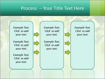 Green leaves PowerPoint Template - Slide 86