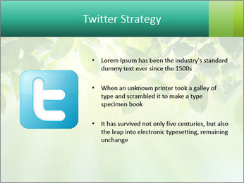 Green leaves PowerPoint Template - Slide 9