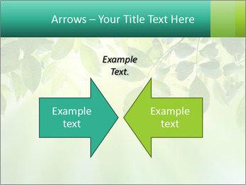 Green leaves PowerPoint Template - Slide 90