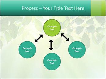 Green leaves PowerPoint Template - Slide 91