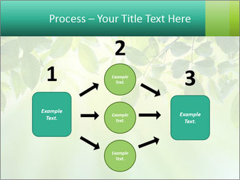 Green leaves PowerPoint Template - Slide 92