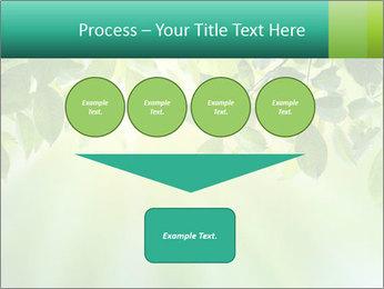 Green leaves PowerPoint Template - Slide 93
