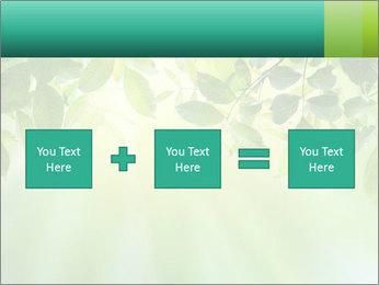 Green leaves PowerPoint Template - Slide 95