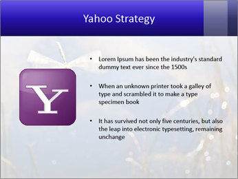 Dragonfly approaching PowerPoint Template - Slide 11
