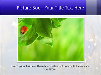 Dragonfly approaching PowerPoint Template - Slide 15