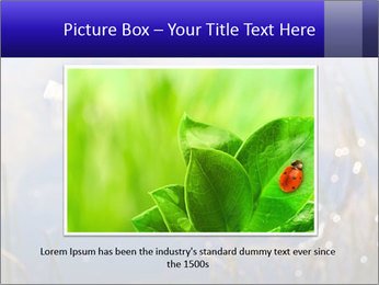 Dragonfly approaching PowerPoint Template - Slide 16