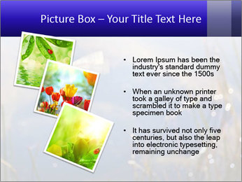 Dragonfly approaching PowerPoint Template - Slide 17