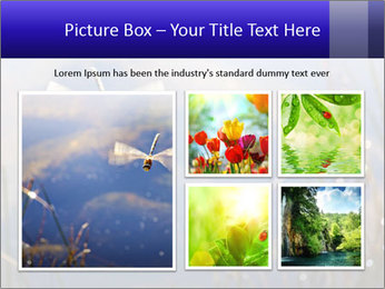 Dragonfly approaching PowerPoint Template - Slide 19