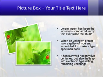 Dragonfly approaching PowerPoint Template - Slide 20