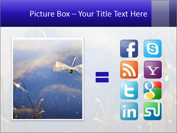 Dragonfly approaching PowerPoint Template - Slide 21