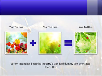 Dragonfly approaching PowerPoint Template - Slide 22