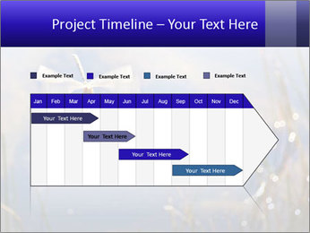 Dragonfly approaching PowerPoint Template - Slide 25