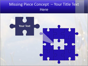 Dragonfly approaching PowerPoint Template - Slide 45