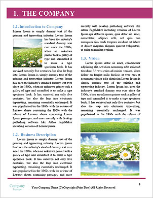 0000092272 Word Template - Page 3