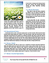 0000092272 Word Templates - Page 4