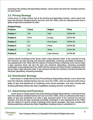 0000092274 Word Template - Page 9