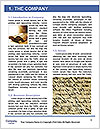 0000092276 Word Template - Page 3