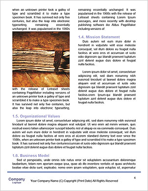0000092276 Word Template - Page 4