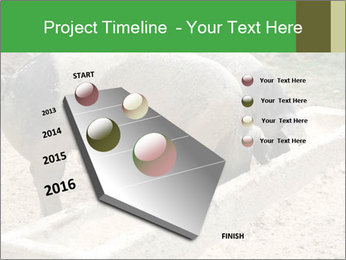 Pigs PowerPoint Template - Slide 26