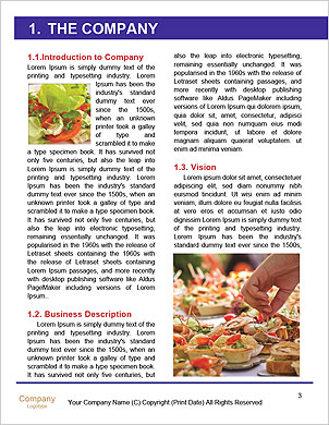 0000092283 Word Template - Page 3