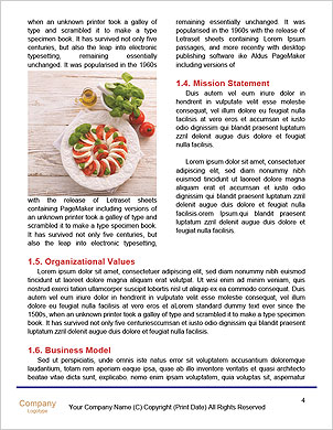 0000092283 Word Template - Page 4