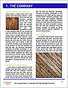 0000092288 Word Template - Page 3