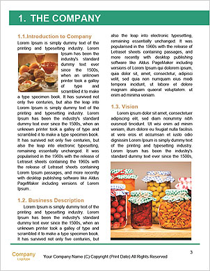 0000092293 Word Template - Page 3