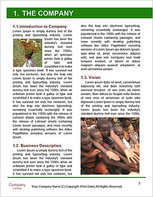 0000092295 Word Template - Page 3