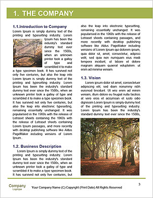 0000092297 Word Template - Page 3
