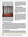 0000092297 Word Templates - Page 4