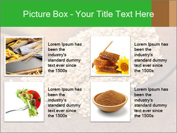 Organic natural PowerPoint Template - Slide 14