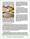 0000092300 Word Template - Page 4