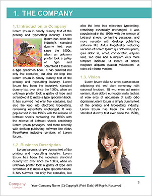 0000092301 Word Template - Page 3
