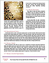 0000092304 Word Template - Page 4