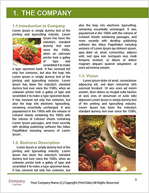 0000092309 Word Template - Page 3
