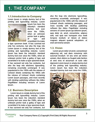 0000092314 Word Template - Page 3