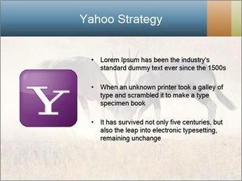 Two male gemsbok antelopes PowerPoint Template - Slide 11