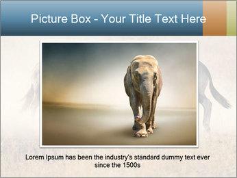 Two male gemsbok antelopes PowerPoint Template - Slide 15
