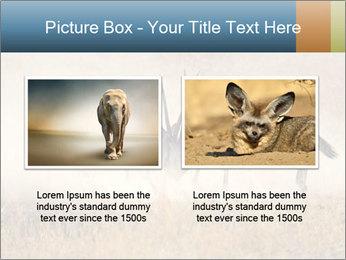 Two male gemsbok antelopes PowerPoint Template - Slide 18