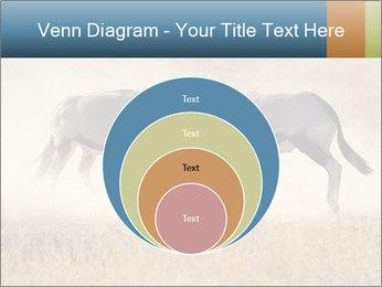Two male gemsbok antelopes PowerPoint Template - Slide 34