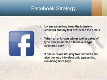 Two male gemsbok antelopes PowerPoint Template - Slide 6