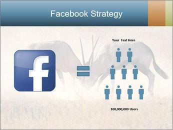 Two male gemsbok antelopes PowerPoint Template - Slide 7