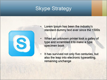 Two male gemsbok antelopes PowerPoint Template - Slide 8