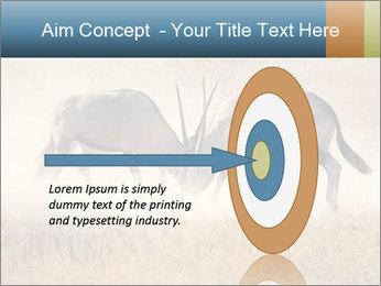 Two male gemsbok antelopes PowerPoint Template - Slide 83