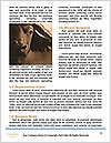 0000092315 Word Template - Page 4