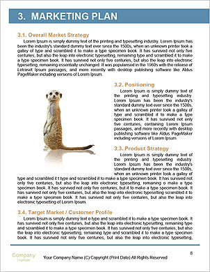 0000092315 Word Template - Page 8