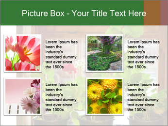 Geranium flowers PowerPoint Template - Slide 14