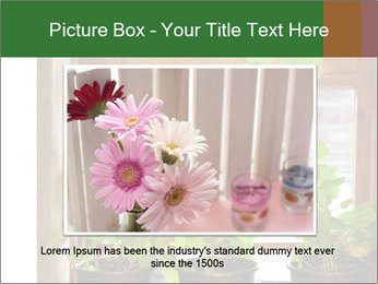 Geranium flowers PowerPoint Template - Slide 15