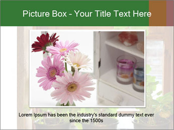 Geranium flowers PowerPoint Template - Slide 16